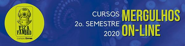 cursosonline2020 banner.png