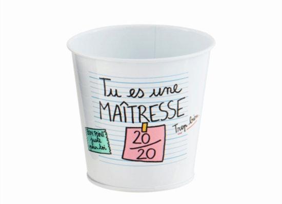 Pot multi-usages PAUL Maîtresse 20/20