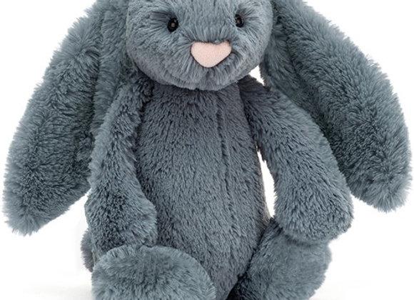 Moyen lapin bleu