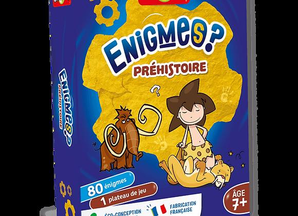 ENIGMES - PRÉHISTOIRE