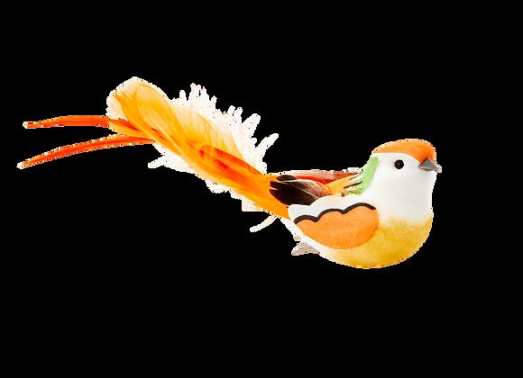 Oiseau sur pince (6 coloris)