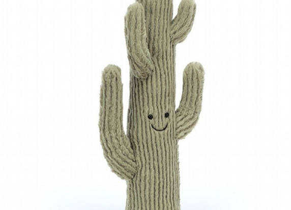 Moyen cactus Amuseable - Jellycat