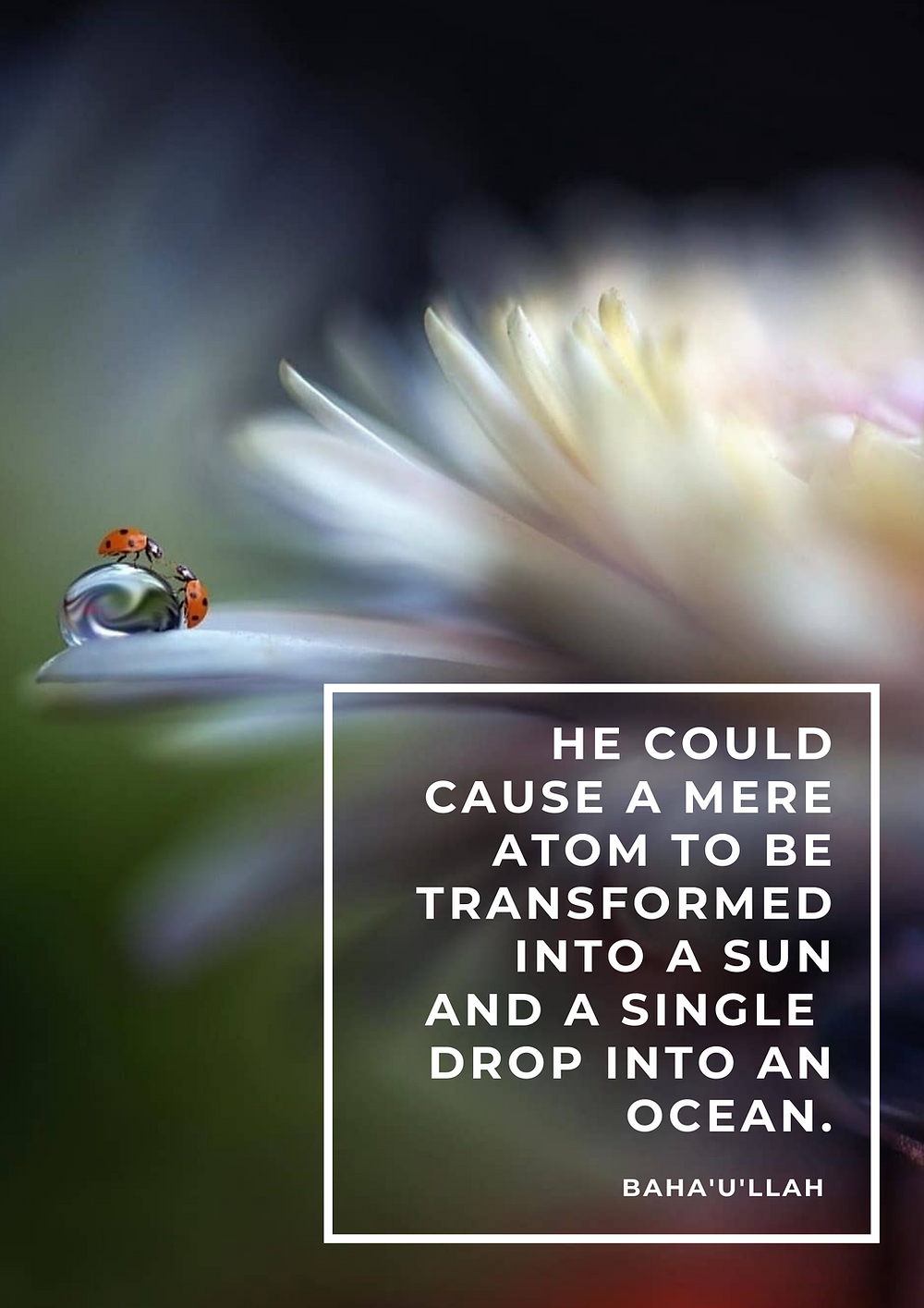 He could cause a mere atom to be transformed into a sun and a single drop into an ocean. - Baha'u'llah