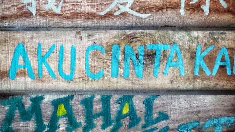 The Eighth Principle—Universal Language and Universal Peace