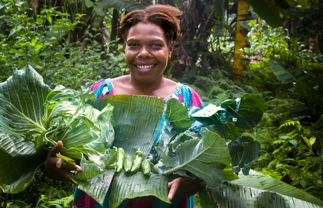 Providing food security in the face of a global health crisis