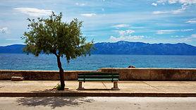 sole god peace tree lake seat.jpg
