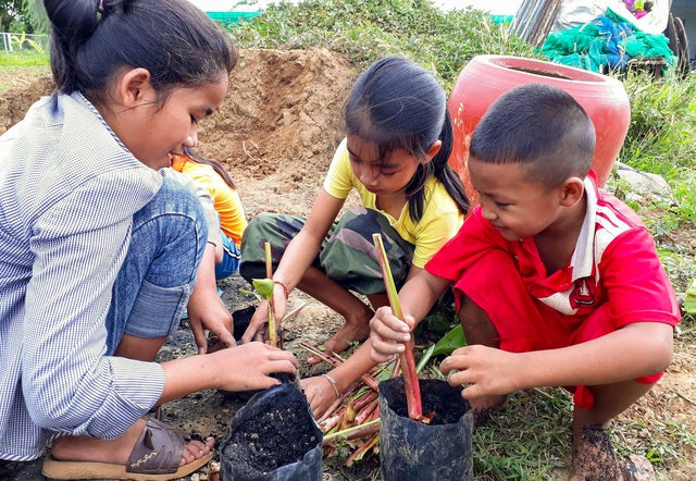3 young children are shown planting young trees into the soil