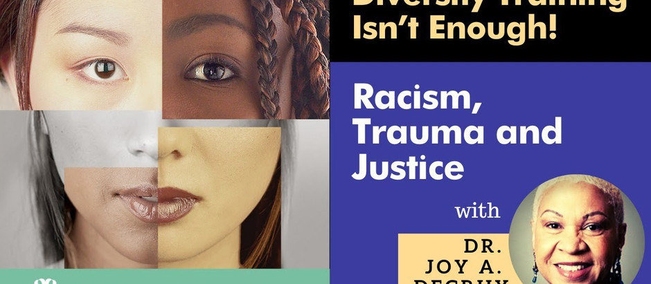 Joy DeGruy: Diversity Training Isn't Enough!