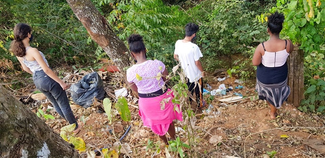 four people are shown picking up trash in between trees