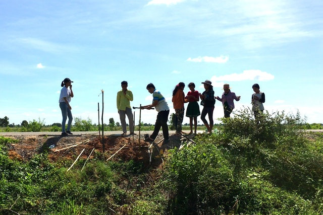 group of 8 adolescents are standing on the side of the road discussing and planting trees and such