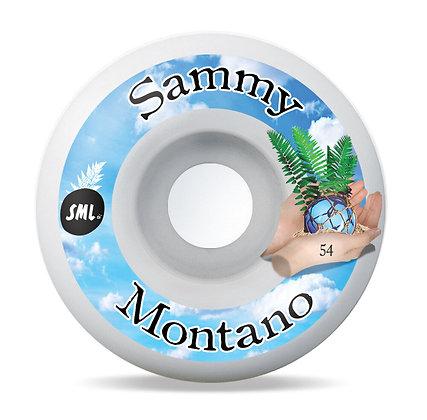 sml. Wheels Sammy Montano- Tide Pool series 54mm OG Wide