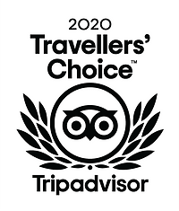 travellers choice award x 2.png