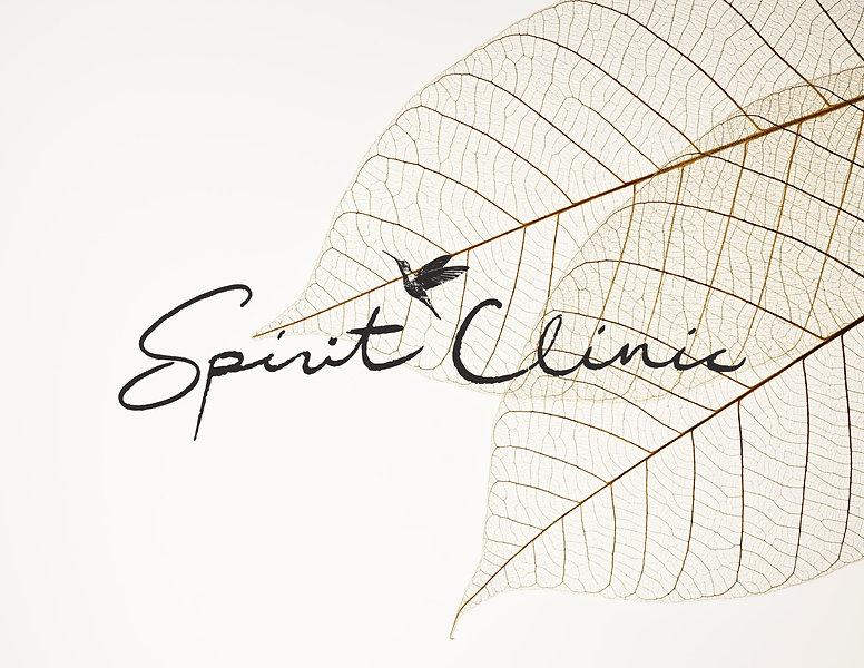SpiritClinic_Logo_FINAL_grey_edited_edited_edited_edited.jpg
