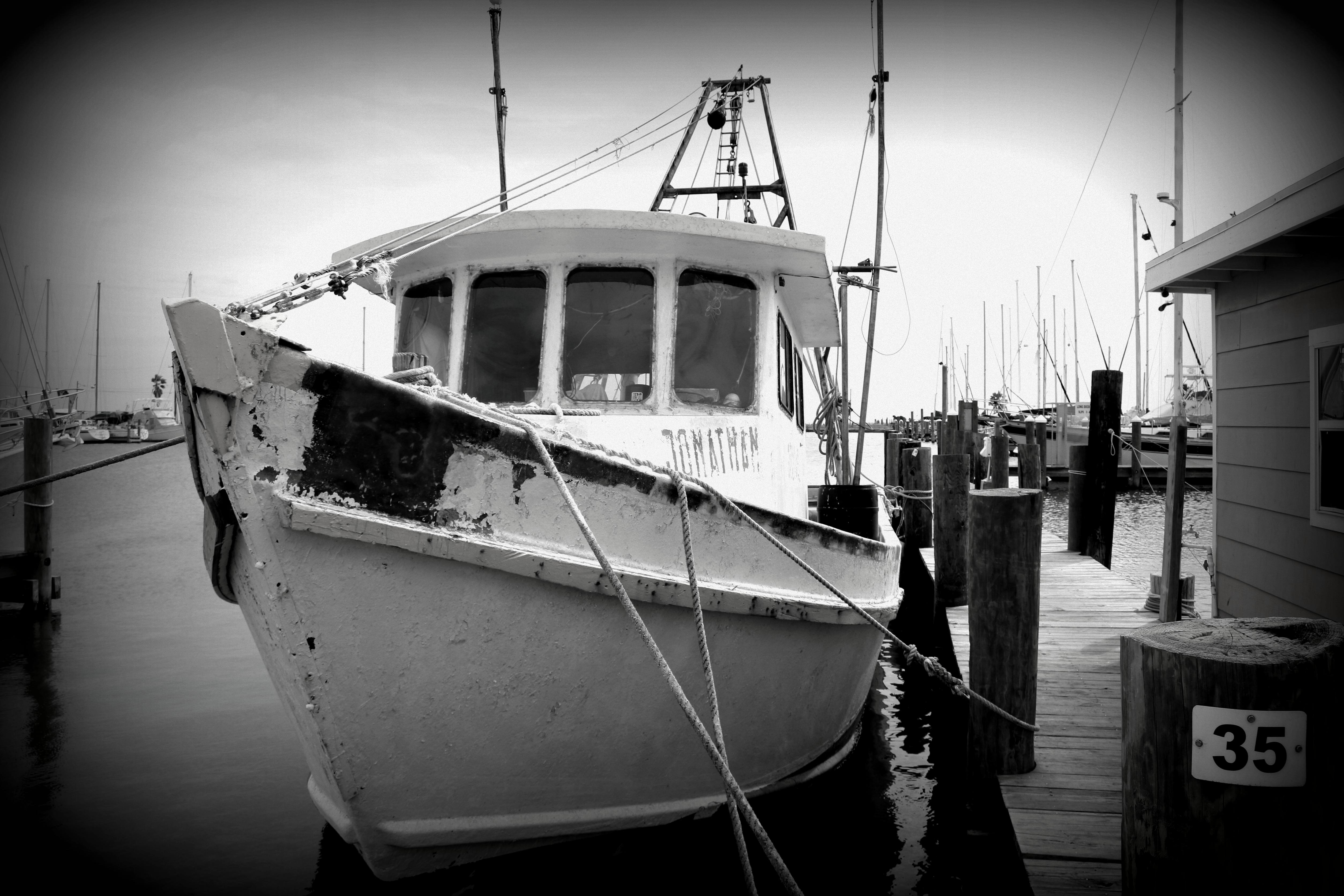 Black & White Boat