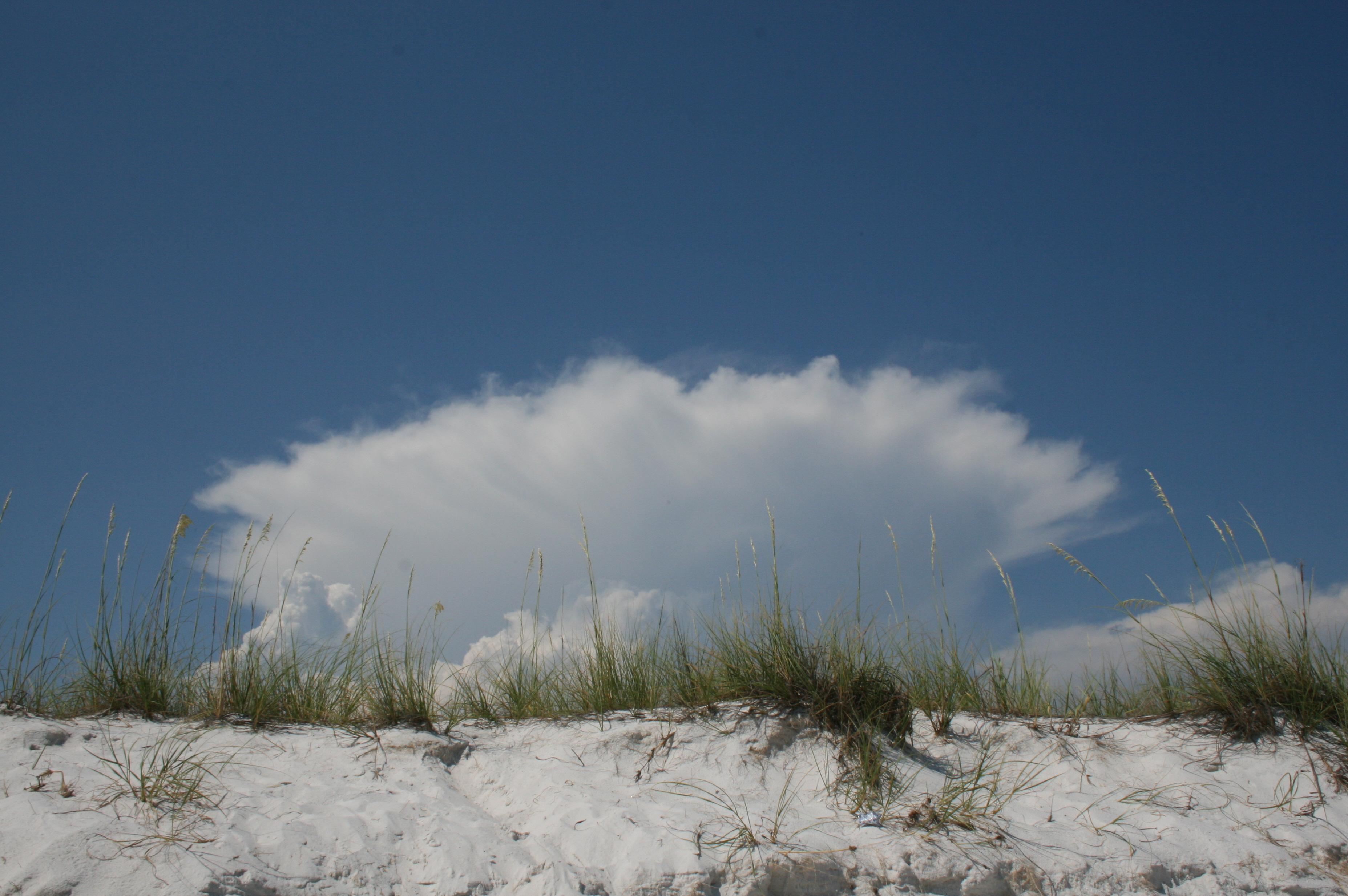 Florida Beachline