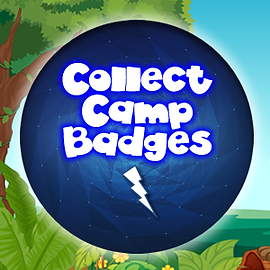 Camp Badges.png