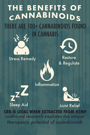 The benefits ofcannabinoids infographic