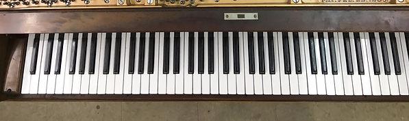 restoration_piano_keys_after_edited.jpg