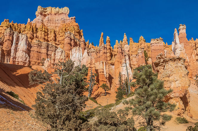 bigstock-The-Scenic-Beauty-In-Bryce-Can-