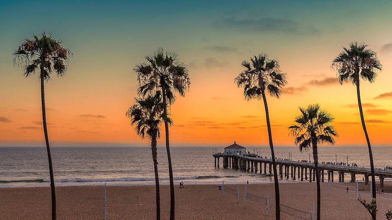 bigstock-Palm-Trees-At-Manhattan-Beach--