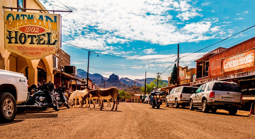 guide-route66-route66-oatman3_edited_edited.jpg