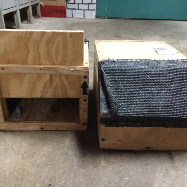 passerine crate