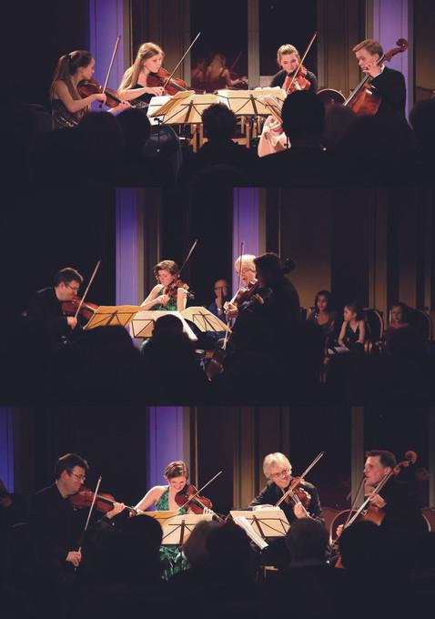 Oslo Quartet Series