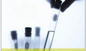 L'Information Scientifique de 2013 au COVID-19