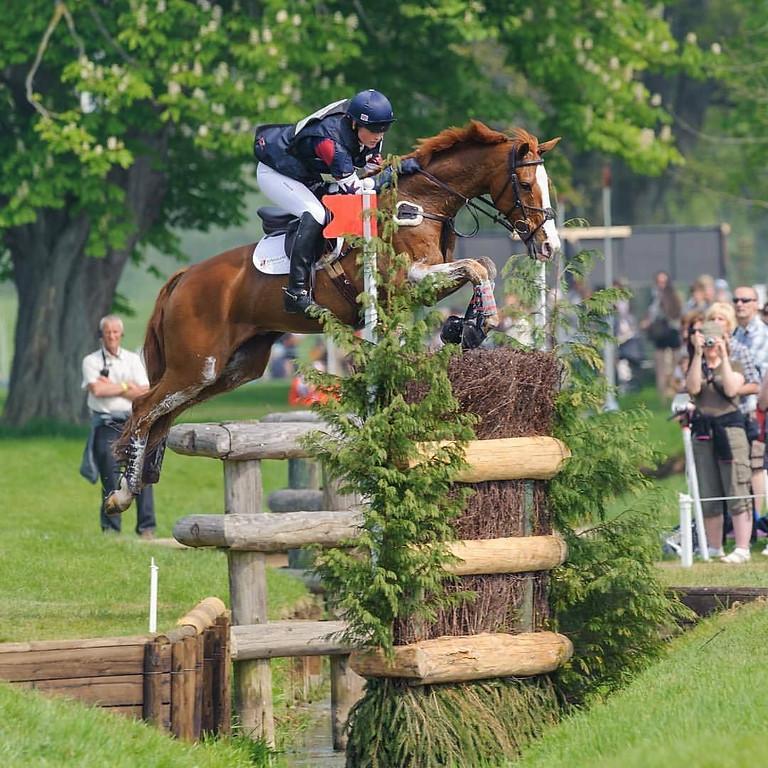 Peter Gillis Jumping & Dressage Clinic