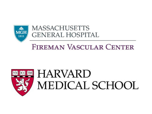 VASCULAR AND ENDOVASCULAR SURGEON