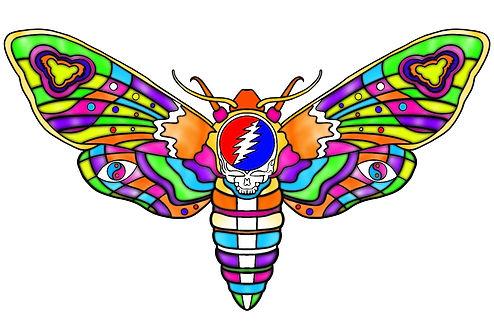 Dead_Butterfly.jpg