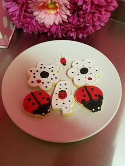 ladybug cookies.jpg