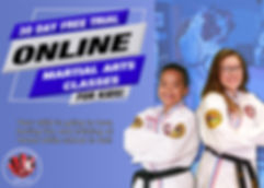 Online_classes_002.jpg