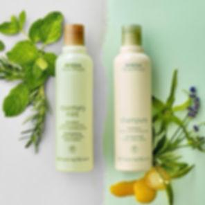 shampureandrm.jpg
