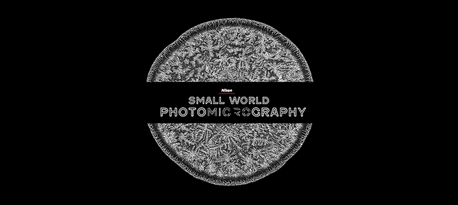 Small World Cover Video1.png