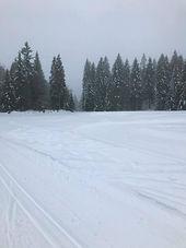 ski de fond.jpg