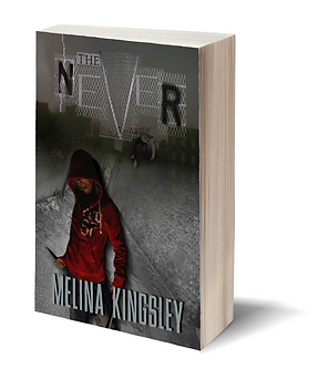 Commissioned book cover for The Never by Melina Kingsley