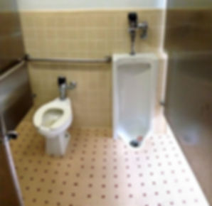 toilet%20and%20urinal_edited.jpg