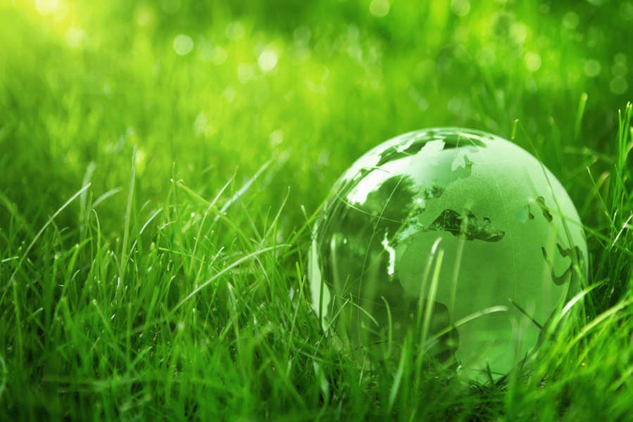 Planet earth on green grass - Iceland nature protection measures