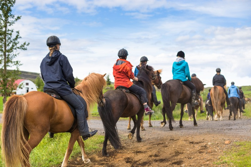 horseback riding tours in Iceland with a group of tourists
