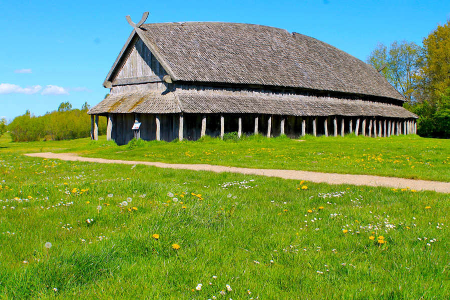 Viking longhouse in the meadows