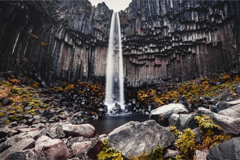 Svartifoss waterfall shows basalt columns in Iceland