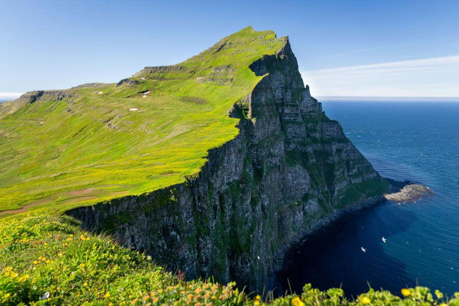 Hornstrandir cliff on a sunny day