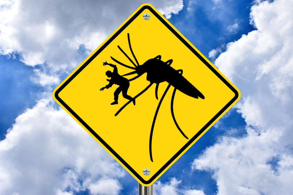 Fun road sign depicting mosquitoes in Iceland