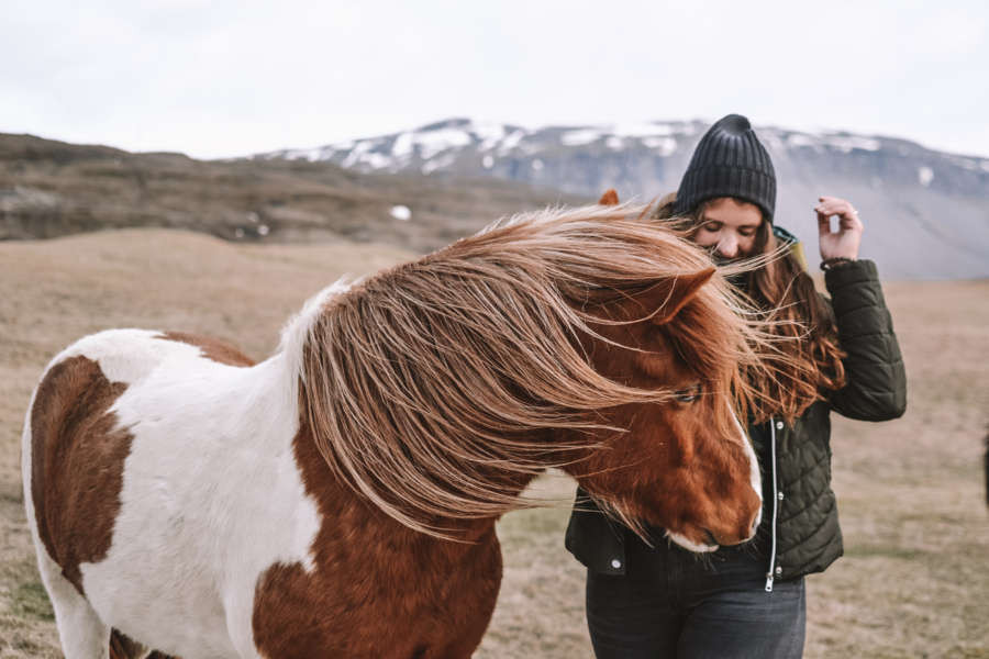 Girl standing by a horse with crazy hair due to the windy weather in Iceland