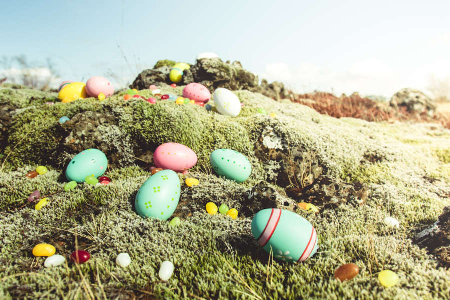 Easter eggs in the Icelandic moss