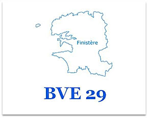 bve29.jpg