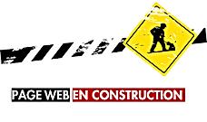 image page web travo.png