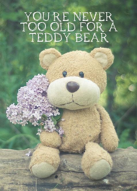 #545 - Never Too Old For A Teddy Bear