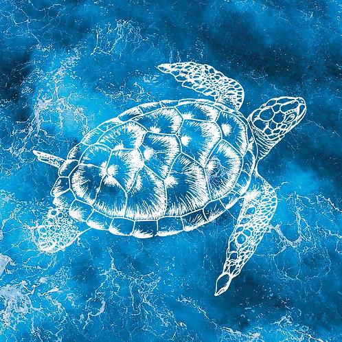 #226 - Sea Turtle